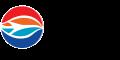 Tampa,Florida logo